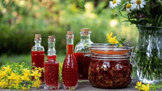 Apprenez comment faire un macérât de Millepertuis - recette et DIY