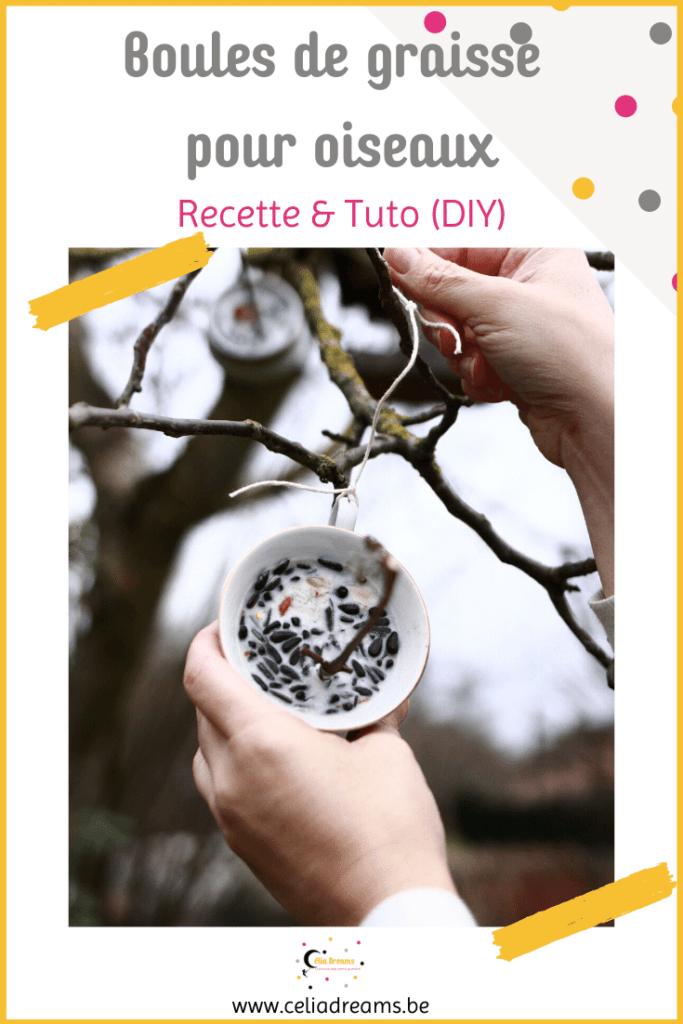 Boules de graisse pour oiseaux: recette facile (DIY et tuto)